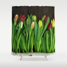 tulips wall Shower Curtain