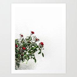 Rambling Roses Art Print