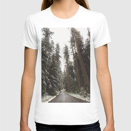 Redwood Forest Adventure II - Nature Photography T-shirt
