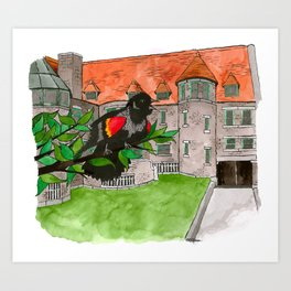Red-winged Blackbird at Glessner House Art Print