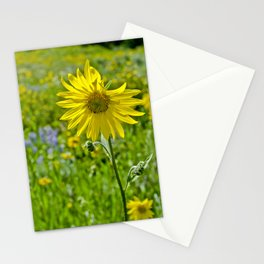 Wild sunflower Stationery Cards