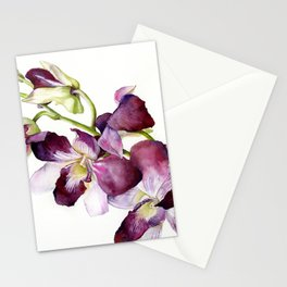 Radiant Orchids: Magenta Dendrobiums (Flipped Orientation) Stationery Cards