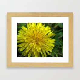 Paradise of Weeds Framed Art Print
