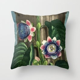 The Quadrangular Passion Flower :  New Illustration Of The Sexual System Throw Pillow