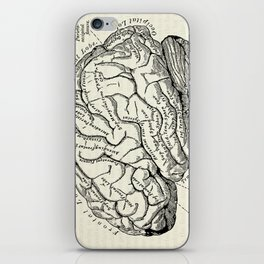 Vintage medical illustration of the human brain iPhone Skin