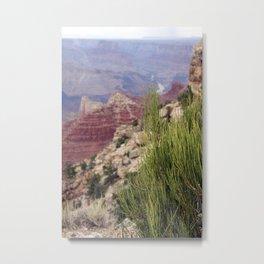 Greenery at Grand Canyon Metal Print