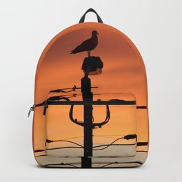 Seagull contemplating sunset Backpack