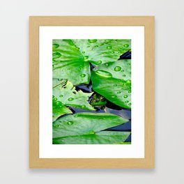 Peek  A Boo frog Framed Art Print