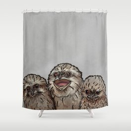 Frogmouth Chicks Shower Curtain