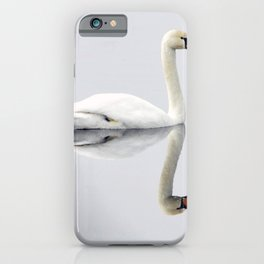 Perfect Reflection iPhone Case