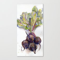 Purple Beets Canvas Print