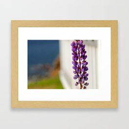 Country roots Framed Art Print