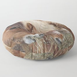 horse by Nathalie ANDRE Floor Pillow