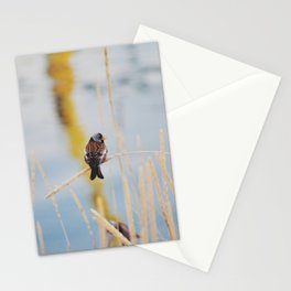 Free Little Bird Stationery Cards