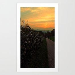 Cornfields with sundown   landscape photography Art Print