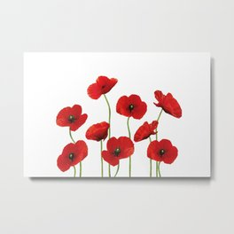Poppies Field white background Metal Print