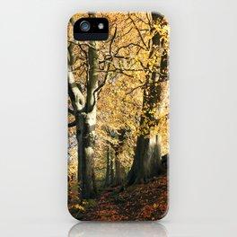 between autumn trees in crownest woods iPhone Case