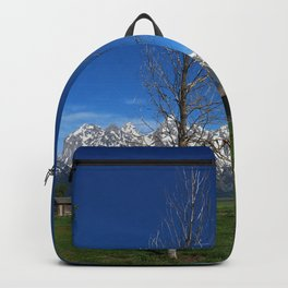 At The Mormon Row Backpack