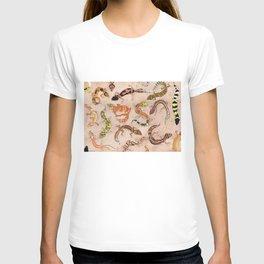 Leopard Gecko Lizard Morphs T-shirt
