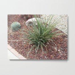 Drought Resistant Garden Metal Print