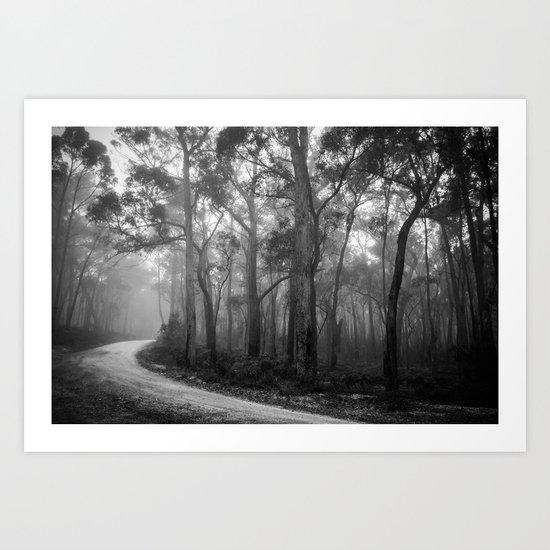 Misty Forest Path Art Print