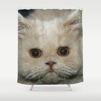 persian Shower Curtains featuring Persian Cat by Neville Hawkins