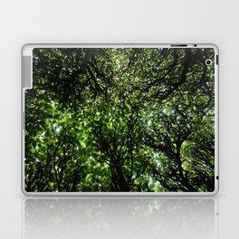 umbrella of trees Laptop & iPad Skin