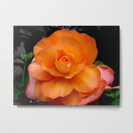 à l'orange Metal Print
