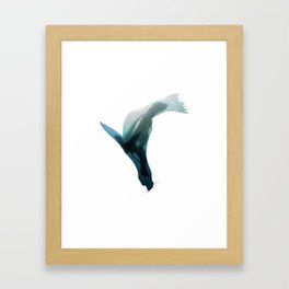 Galapagos sea lions triple exposure Framed Art Print