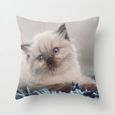 Pretty Kitty Throw Pillow