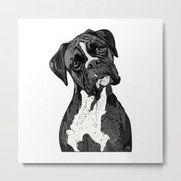 Black and White Boxer Metal Print