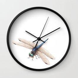 Dragonfly by Lars Furtwaengler | Colored Pencil / Pastel Pencil | 2014 Wall Clock
