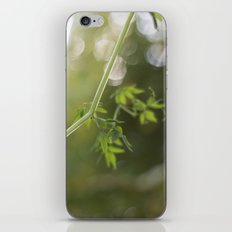 Trailing iPhone & iPod Skin