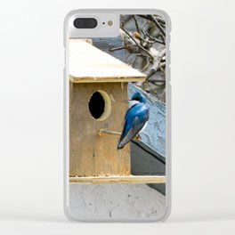 Bird house Clear iPhone Case