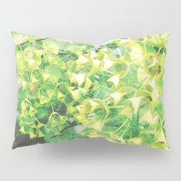 [27] Pillow Sham