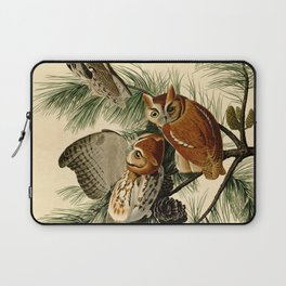 Little Screech Owl Laptop Sleeve