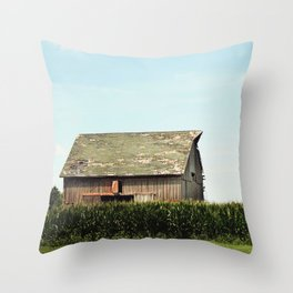 On the Outskirts  Throw Pillow
