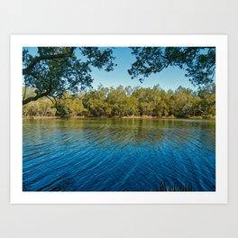 Pourmalong Creek, Lake Macquarie Art Print