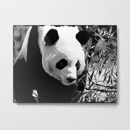 Panda Bear Metal Print