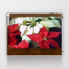 Mixed Color Poinsettias 2 Blank P3F0 Laptop & iPad Skin