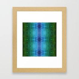 Kereru Framed Art Print