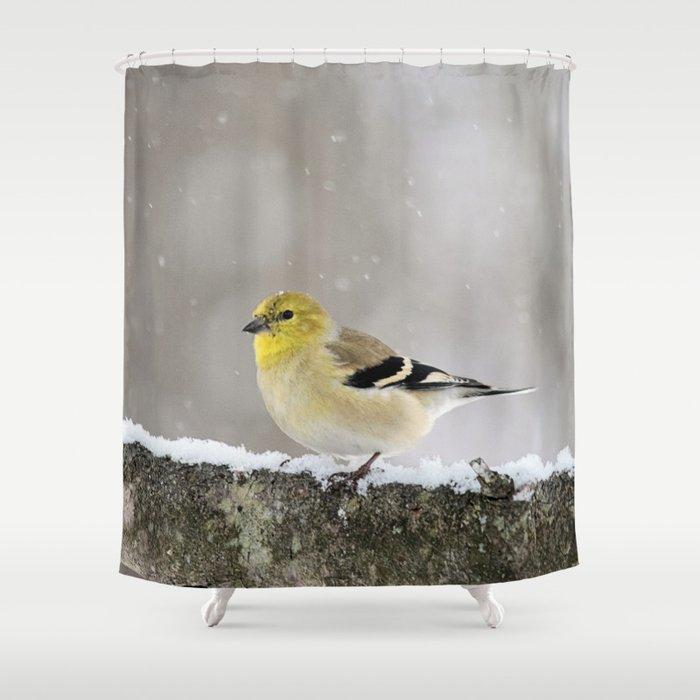 Winter Goldfinch Shower Curtain