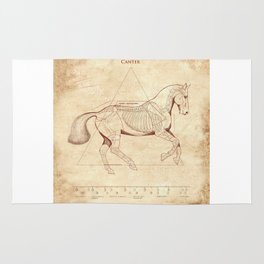 Da Vinci Horse: Canter Rug