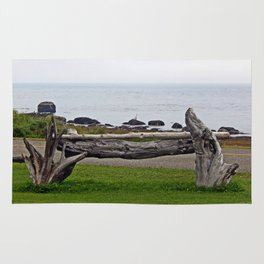 Driftwood Fence and the Sea Rug