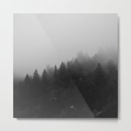 Scottish Forrest Mist Metal Print