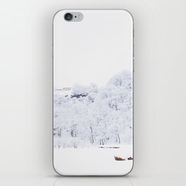 Cabin in the Snow (Color) iPhone Skin