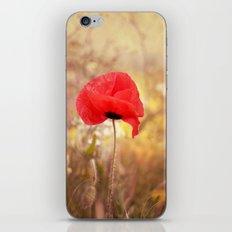 Proud Poppy  iPhone & iPod Skin