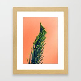 Complementary Colors Green Salmon Pink Against Background Framed Art Print