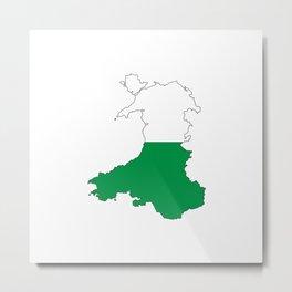 Wales and the Dragon Metal Print