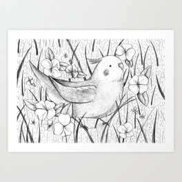 Cockatiel in Grass Art Print